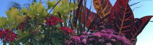 fall hanging basket