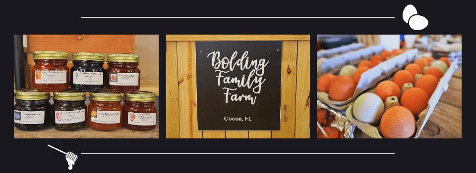 bolding-family-min